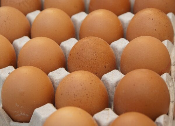 Яйцо 2с