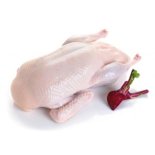 Мясо утки